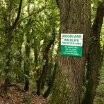woodland protection signs